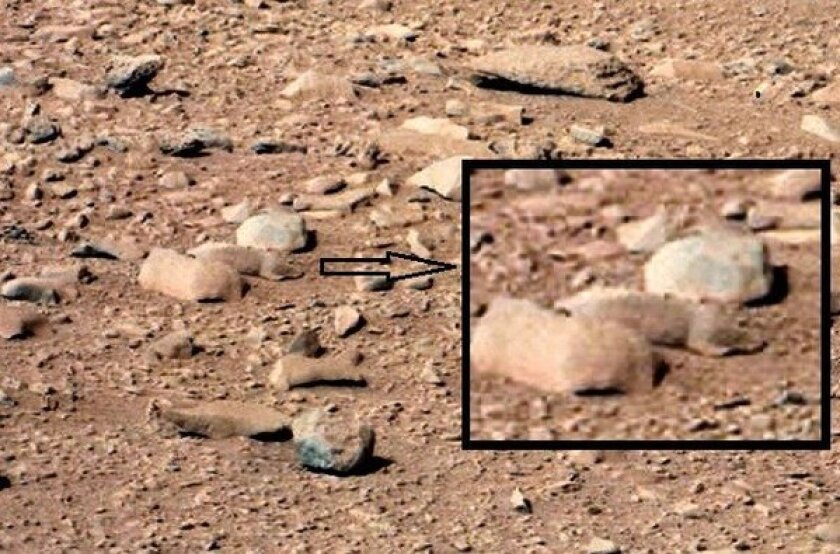 "Mars rat: An image from the ""Rocknest"" site taken with the NASA rover Curiosity's Mast Camera on the 52nd Martian day shows a rock that resembles a rodent."