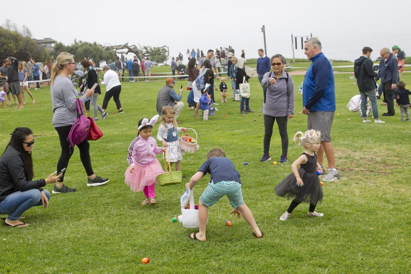 Egg Hunt fun in Del Mar