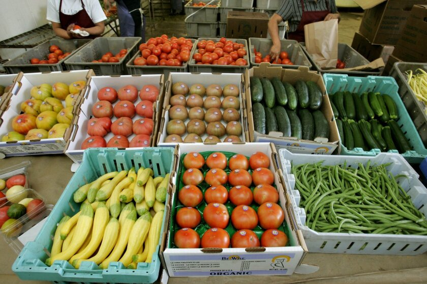Various vegetables ready for shipment at the Be Wise Ranch.