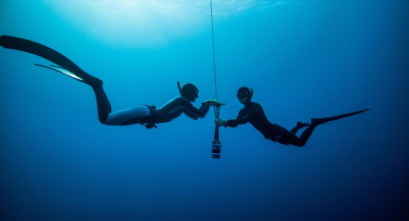 A 'Performance Freediving International' instructor checks the dive line with a student.