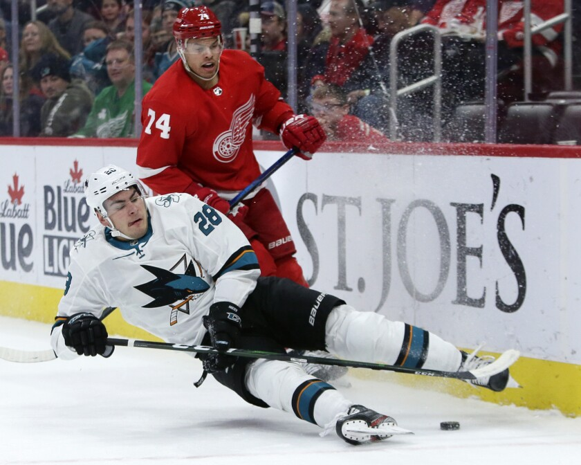 Sharks Red Wings Hockey