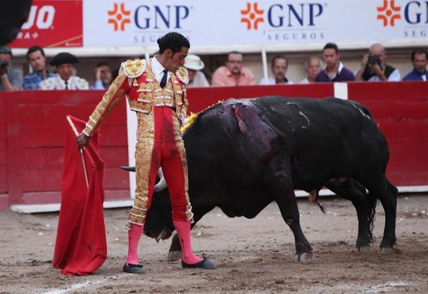 El torero mexicano Ignacio Garibay. EFE/Archivo
