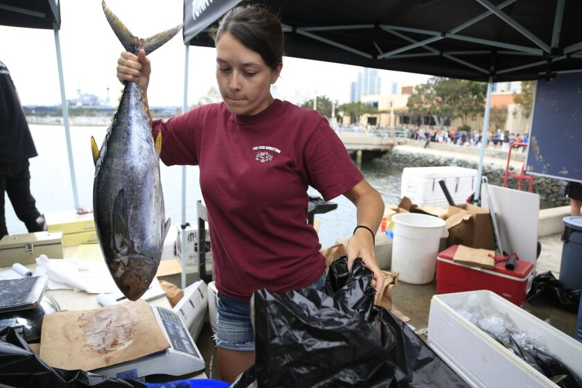 August 2nd, 2014 San Diego, CA- Allison Roach prepares to bag a 16 lb. yellow fin tuna for a customer on the first day of  San Diegos Tuna Harbor Dockside Market on Saturday downtown near Seaport Village. Photo by David Brooks/ U-T San Diego MANDATORY PHOTO CREDIT DAVID BROOKS / U-T SAN DIEGO; ZUMA