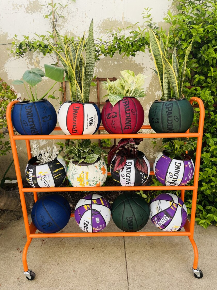 A rack holds an array of basketballs, some turned into planters, some still intact.