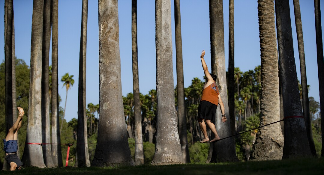 Jesus Duenas of Riverside practices his slack lining while his brother Alfred Duenas, left, does strength exercises amongst the seclusion of palm trees in Fairmount Park during the coronavirus pandemic n Riverside.