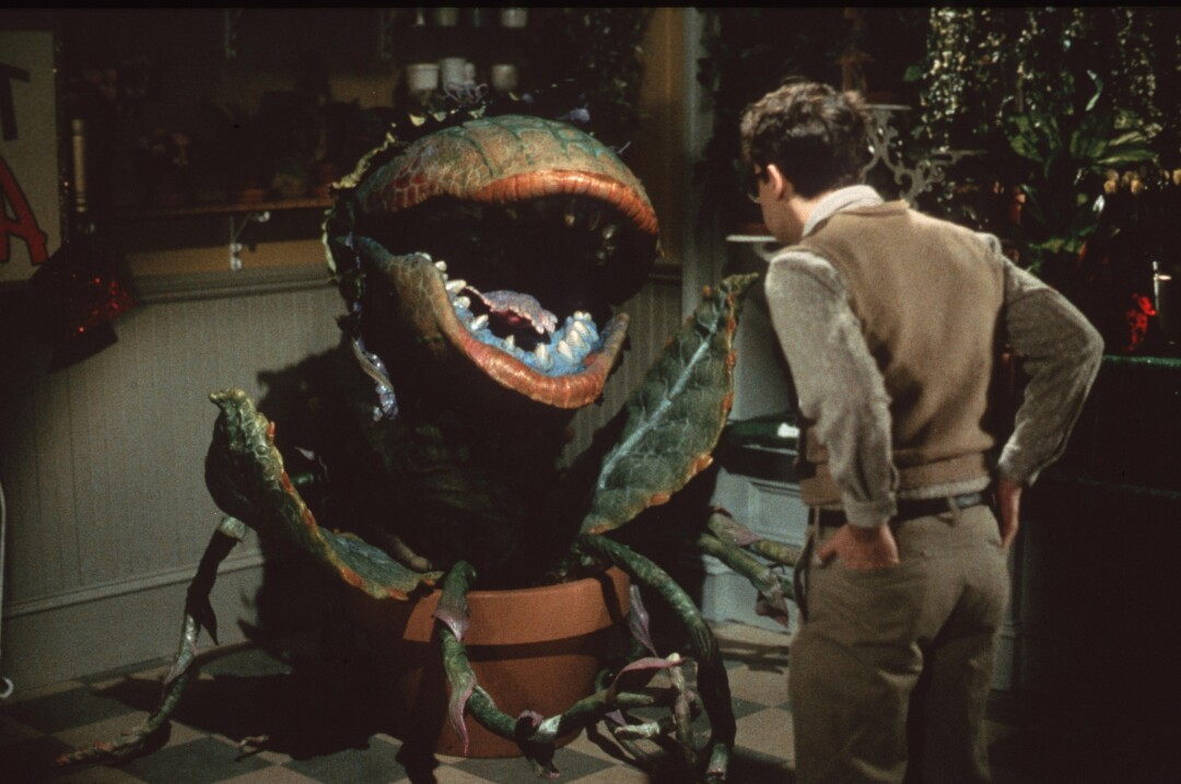 la_ca_little_shop_of_horrors_movie_61.JPG