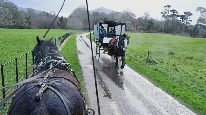 "A ""jaunting car"" (horse drawn carriage) works the road to Muckross Abbey, Killarney, County Kerry, I"