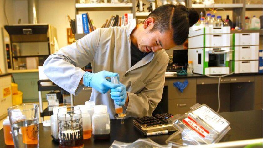 Devin Tani fills HPLC Vials for sugar analysis at White Labs in Mira Mesa.