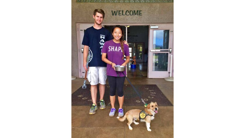 Emile Modesitt and author's daughter Nora Groves with Ralph, a terrier mix from the Kauai Humane Society. Ralph is now named Toby and lives with the Bennett family in Granite Bay, Calif.