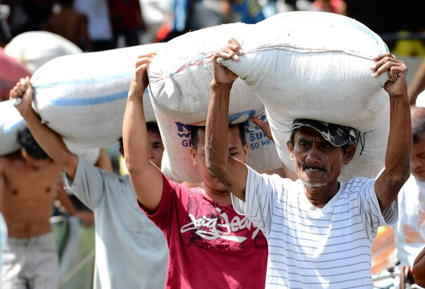 Survivors of Typhoon Haiyan carry away sacks of rice from a warehouse in the Philippines.