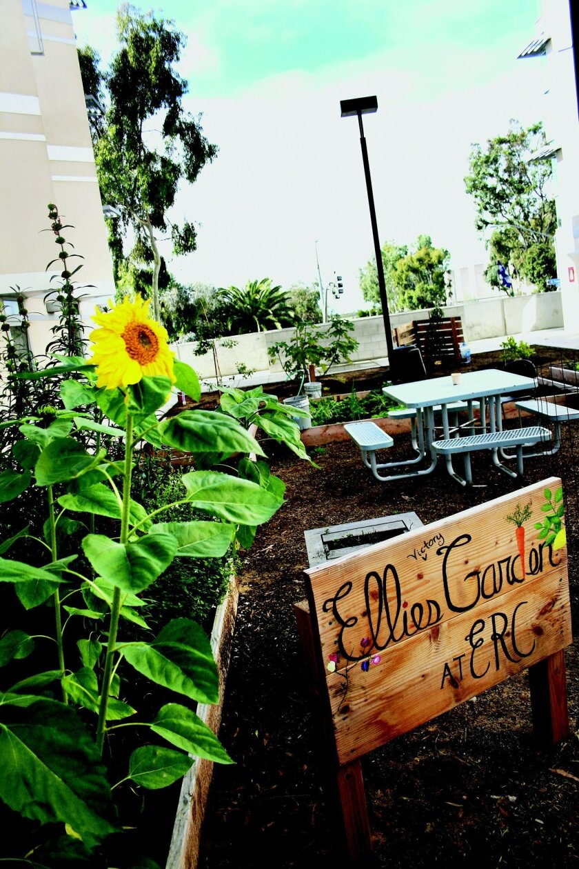 A sign announces Ellie's Garden at Eleanor Roosevelt College at UCSD. Erika Johnson • UCSD University Communications