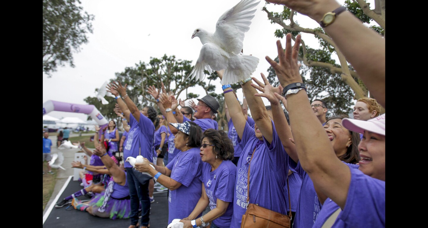 Cancer survivors release white pigeons before the start of the Relay for Life San Diego Downtown cancer walk, a fundraiser for the American Cancer Society, at Embarcadero Marina Park North in San Diego.