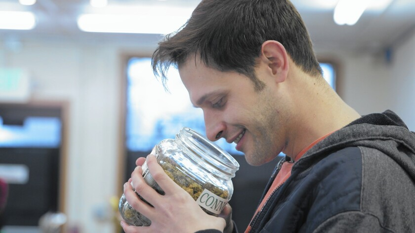 A cannabist critic, Jake Browne, gets into the weed in a documentary on Colorado pot culture.