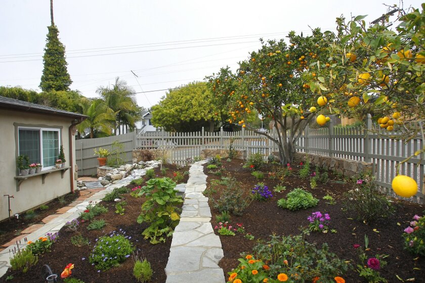 Grass was taken out and replaced with drought resistant landscape in the front yard at this European story book cottage in Encinitas.