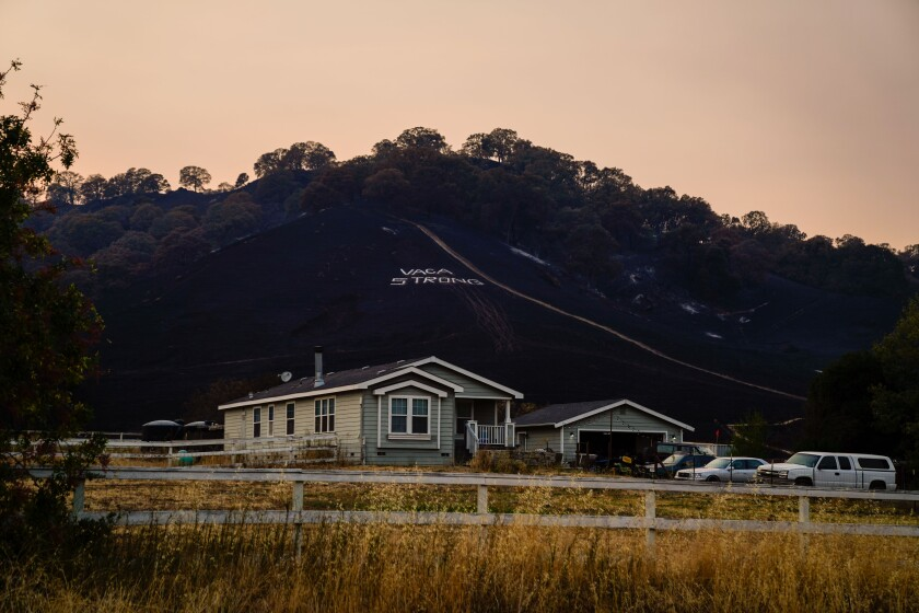 """The phrase """"Vaca Strong"""" is seen on a burnt out hillside along Pleasants Valley Road."""