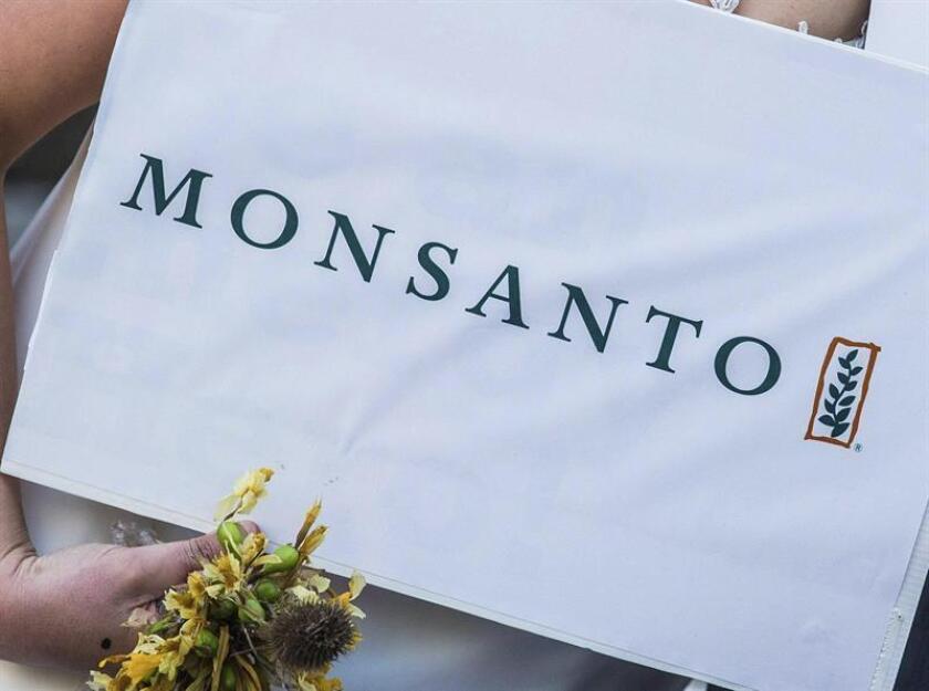 El jurado, del Tribunal Superior de San Francisco, determinó hoy que Monsanto no advirtió correctamente del riesgo para la salud que se corría al usar este producto con glifosato. EFE/Archivo