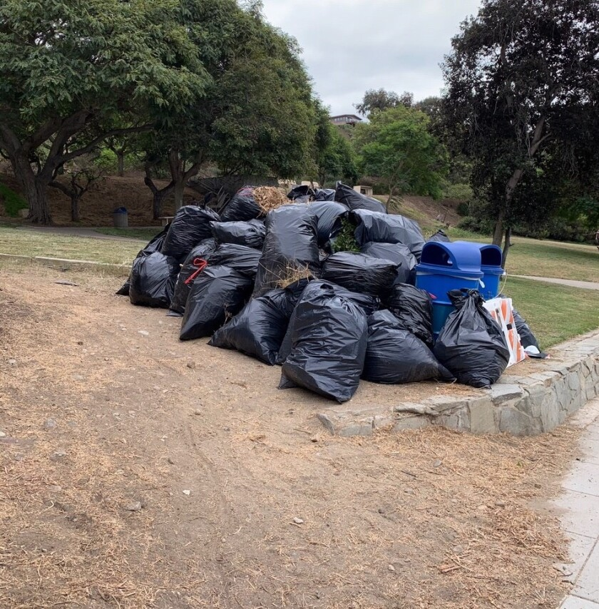 An Oct. 24 cleanup of the La Jolla Bike Path and Starkey and Via del Norte parks drew about 90 volunteers.