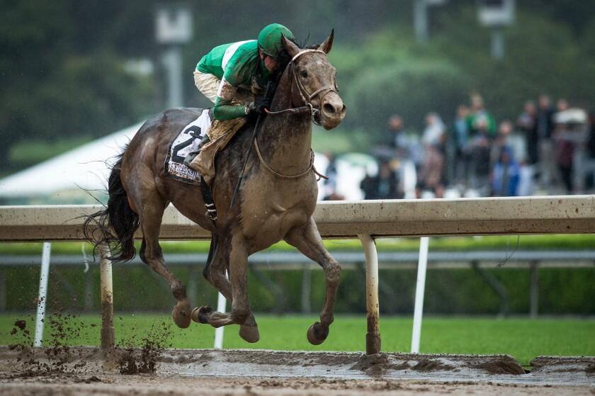 APphoto_Preakness Horse Racing