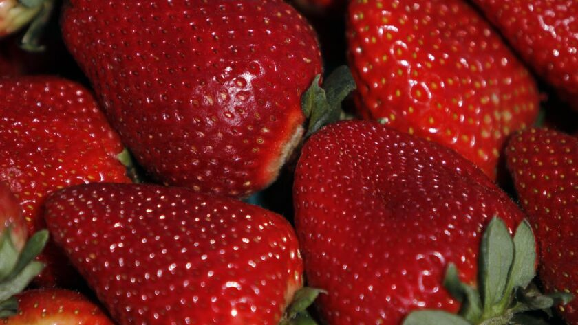 Strawberries are the subject of yet another custody battle in California agriculture.
