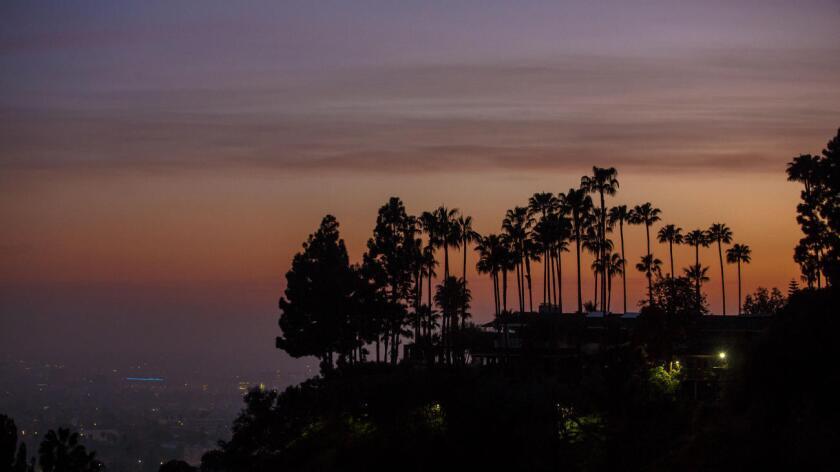 Las palmeras en las colinas de Hollywood resaltan contra el cielo del atardecer, el 1º de marzo pasado (Ricardo DeAratanha/Los Angeles Times).