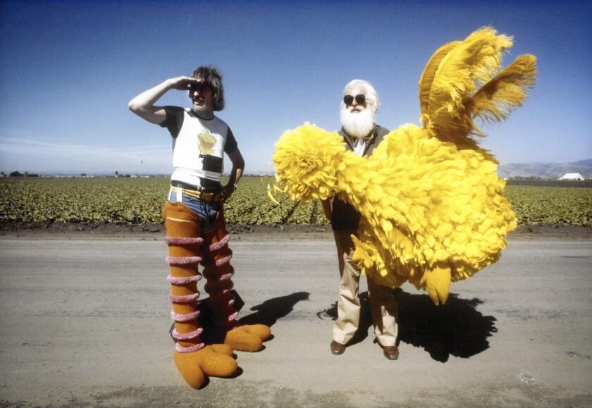 'I Am Big Bird'