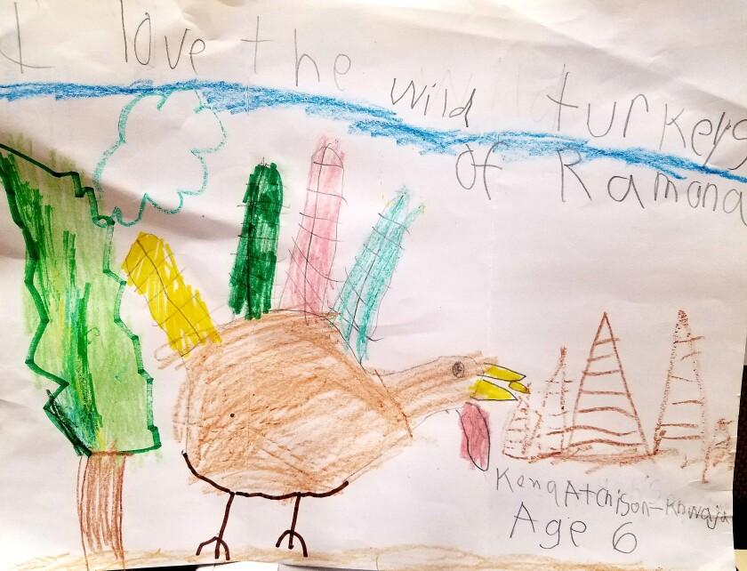 Kid Art-Kona Atchison-Khwaja Age 6.jpg
