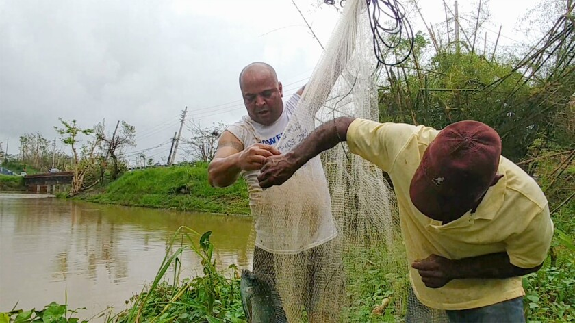 Joel Cotto, 50, and his friend, Jesús González, 57, retrieve a sweet water fish, known in Puerto