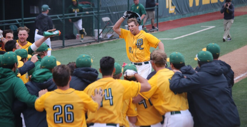 Point Loma Nazarene junior outfielder Micah Pries has been greeted 18 times by teammates after home runs this season.