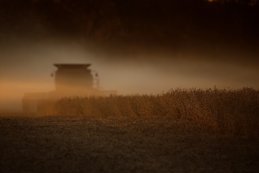 Soybeans are harvested in Kansas