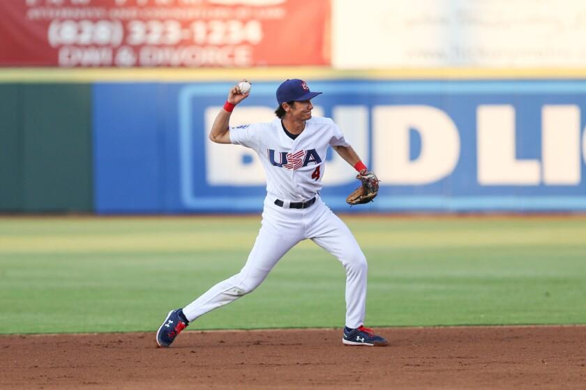 williams usa baseball.jpeg