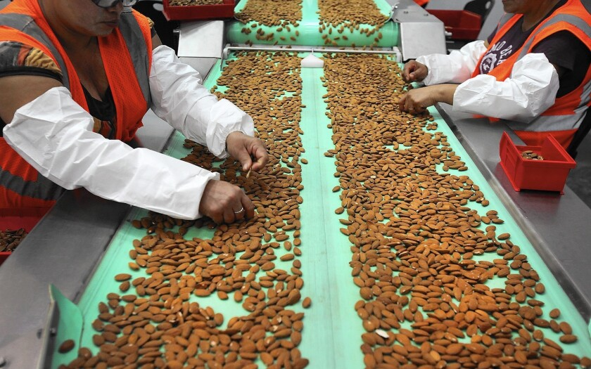 California sold $2.3 billion in agricultural products to China in 2012, with almonds, dairy products, wine, walnuts and pistachios making up the top five products, according to the California Department of Food and Agriculture. Above, workers sort almonds at a processing plant in Lost Hills, Calif.