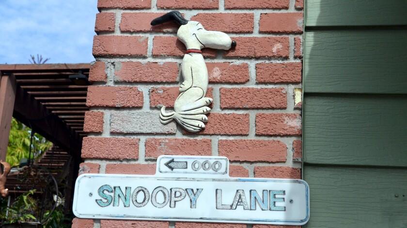 Mr. Snoopy1.jpg