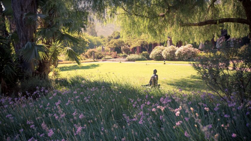 Open space is in abundance at Rancho La Puerta, where guests can enjoy 3,000 acres of nature.