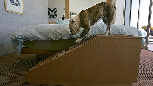 How to build a dog ramp - Los Angeles Times