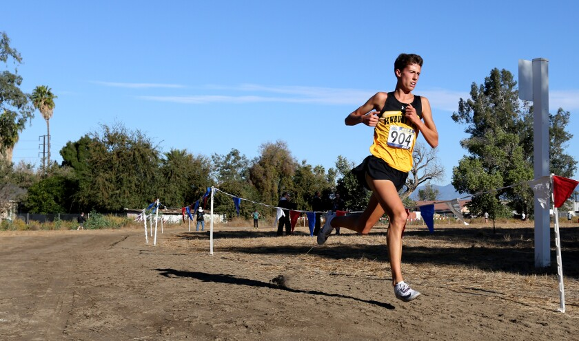 Nico Young concluded the cross-country season on Saturday by winning the national championship at the Nike Cross championship in Oregon.