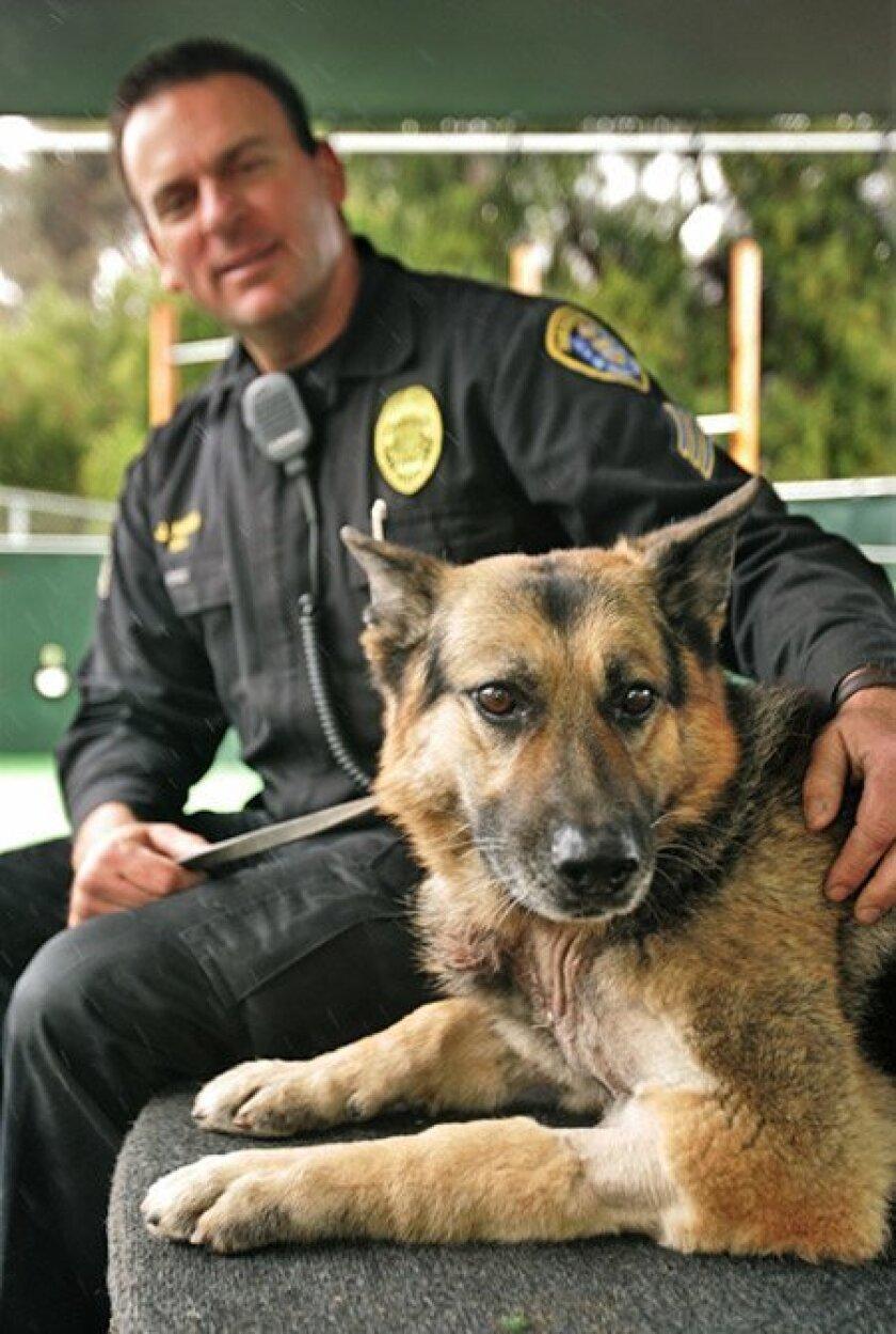 San Diego police Sgt. Jess Havin sat with his German shepherd partner, Earp, yesterday at headquarters. (Howard Lipin / Union-Tribune)
