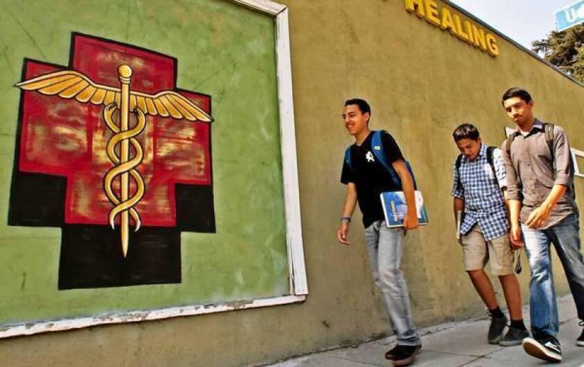 Medical marijuana backers seek to repeal L.A. dispensary ban