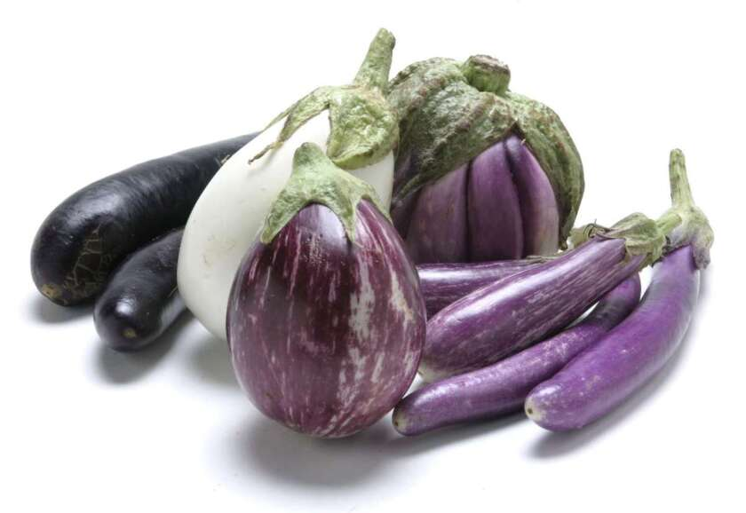 Seasonal eggplant, left to right: Chinese, White Cloud, Rosa Blanca, Fairytale, Marcha, and, in the foreground, Calliope.