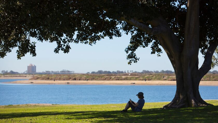Carole, a visitor to Mission Bay Park near the visitor information center, and not far from East Mission Bay Drive,  keeps cool while relaxing under a tree and escaping the higher than normal Tuesda