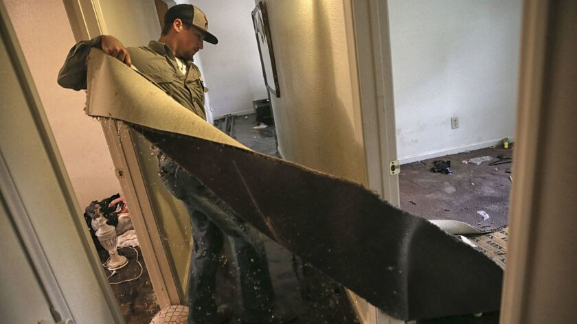 An east Houston landlord strips a house of drenched carpet as many people return home to begin rebui