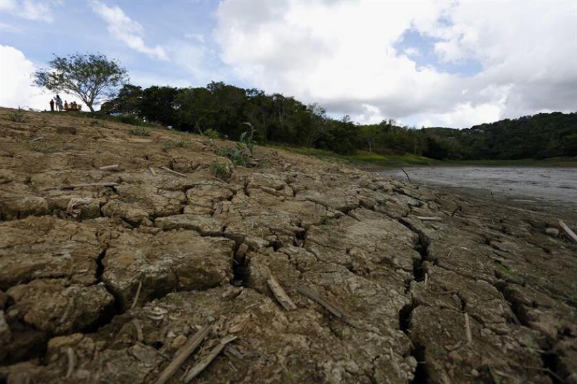 Vista del lago Carraizo, en el municipio de Trujillo Alto (Puerto Rico) tras haber bajado considerablemente su nivel del agua debido a la sequia. EFE/Archivo