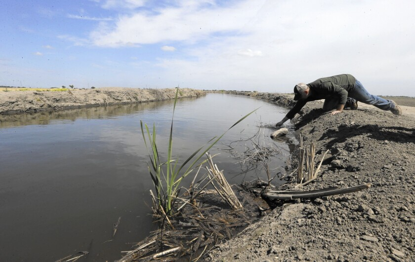 Editorial: Newsom's delta tunnel plan could work — but only as part of a more comprehensive water effort