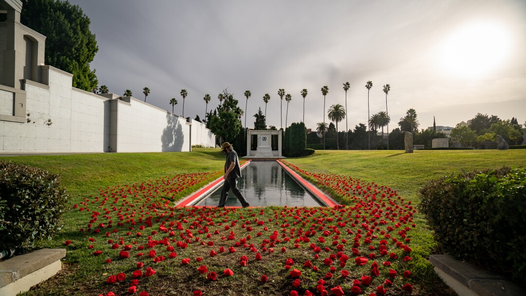 Felt roses cover the grounds at Hollywood Forever Cemetery.