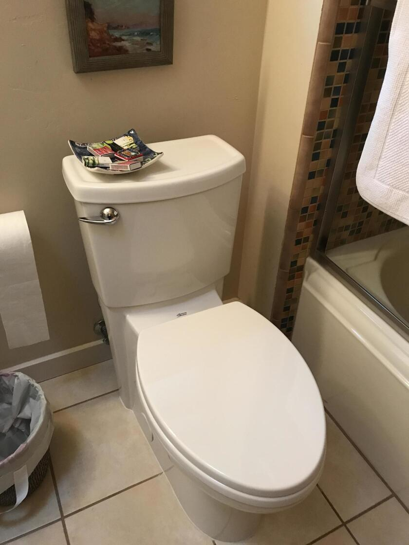 Our neighbors call their new low-flow toilet 'The Terminator.'