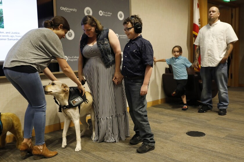 Service dog Justice gets his service vest while new handler, Lauren Shrader, and her son, Aiden, who is on the autism spectrum, look on during a graduation ceremony on Saturday in La Jolla for Good Dog! Autism Companions, a Fallbrook nonprofit that trains and places service dogs with families with children who have autism as well as with autism therapists.