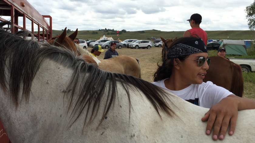 Tech Big Crow, 18, cares for Blue, one of the horses he and others have brought to the protest site, at the confluence of the Cannonball and Missouri rivers.