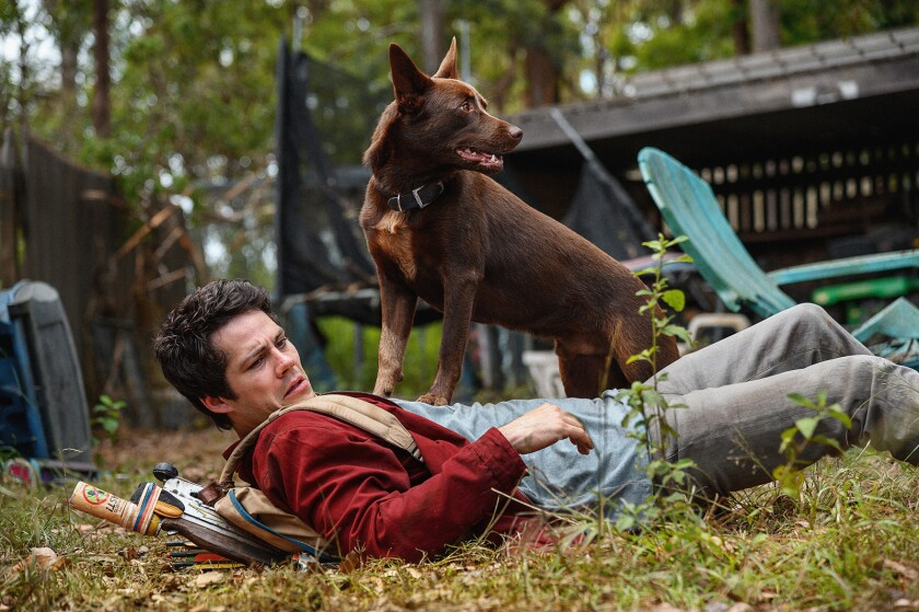 "Dylan O'Brien in a scene from the movie ""Love and Monsters."""
