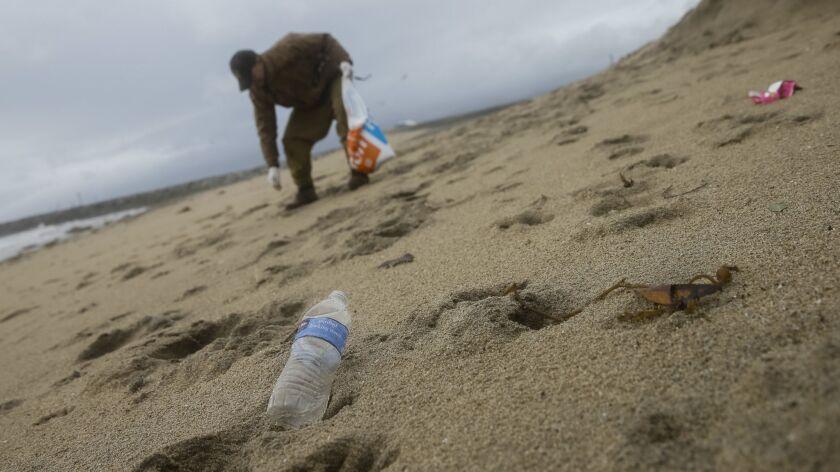 A volunteer picks up trash on a beach in Playa del Rey in 2014.