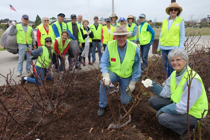 Members of the Point Loma Association's Mean Green Team work at the Hugh Story Memorial Rose Garden at Liberty Station.