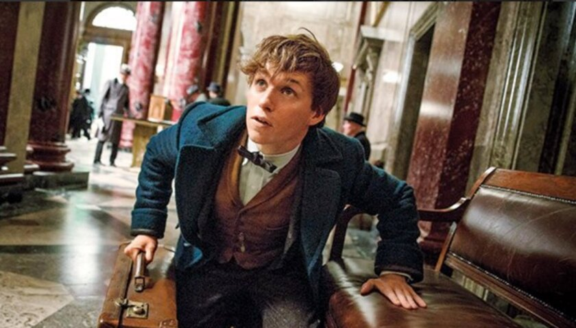 A still from 'Fantastic Beasts' with Eddie Redmayne from Entertainment Weekly.